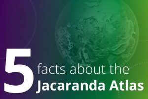 The jacaranda atlas facts header